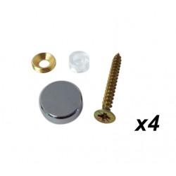 Kit fixation chrome pour plaque pro